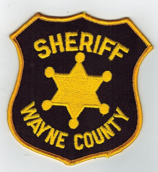 WAYNE COUNTY SHERIFF STAR PATCH